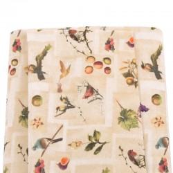 Birdy 101