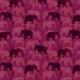 AFRICA 310