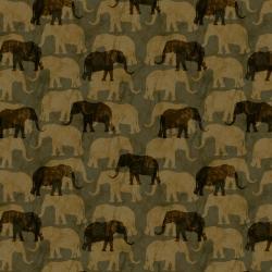 AFRICA 710